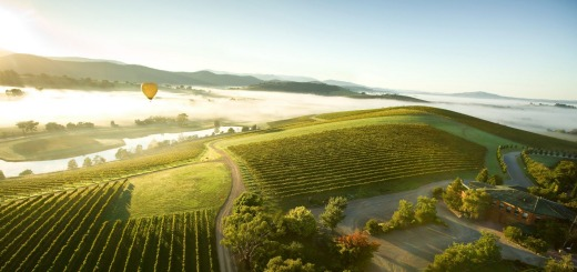Hot air balloon over the Yarra Valley.