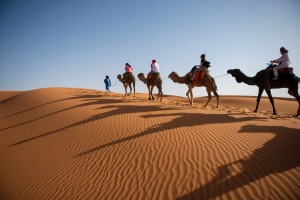 Camel rides can be anything from 15 minutes to several hours at Erg Chebbi in the Sahara Desert.