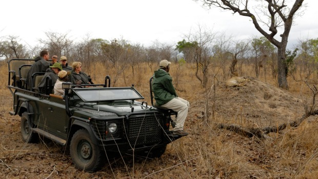 Tourists watching cheetah during a game drive in Sabi Sand Private Game Reserve.
