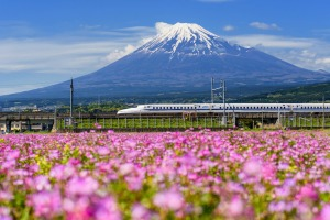 Japan's bullet trains still have an uber-cool presence and futuristic style.