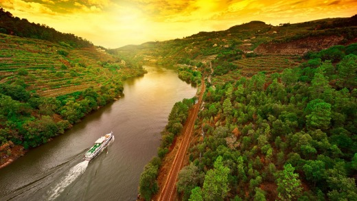 Vineyards along the River Douro, Portugal.