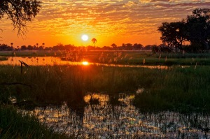 Sunset in the wildlife-rich Okavango Delta, Botswana.