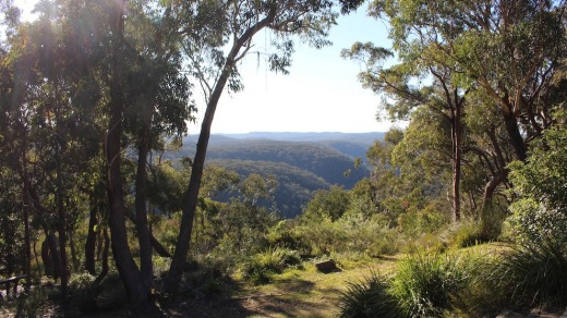 The retreat's tranquil Blue Mountains setting.