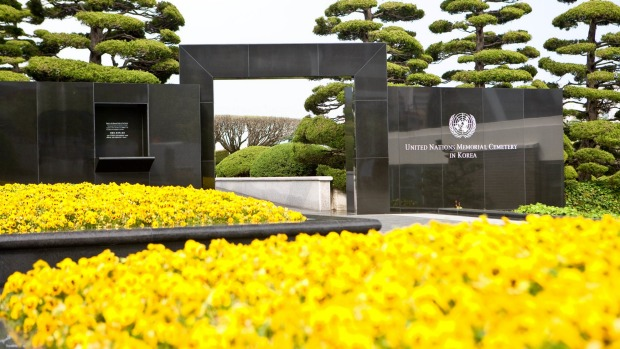The United Nations Memorial Cemetery in Busan, South Korea, is is an unusually tranquil and contemplative place.