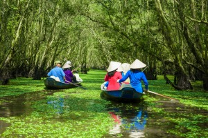 Tra Su Bird Sanctuary offers some tranquillity in Vietnam.