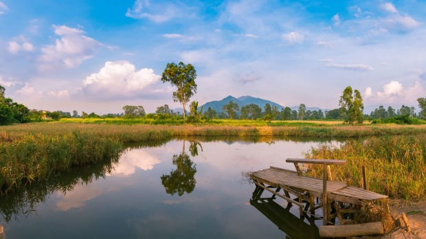 Nam Sang Wai is a wetland area and nature reserve in the New Territories that is protected by the Hong Kong government.