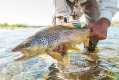 Catch and release is the custom in Patagonia.