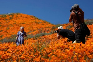 A model poses among wildflowers in bloom.