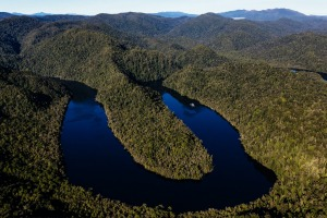Cruising Tasmania's Gordon River.