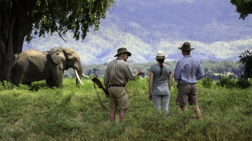 Guides control whether you live or die on walking safaris.