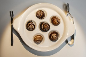 French snails.
