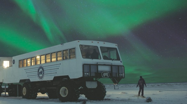 "See the Northern Lights from the ""tundra buggy"" in Manitoba, Canada."