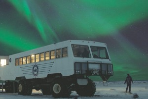 """See the Northern Lights from the """"tundra buggy"""" in Manitoba, Canada."""