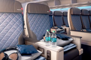 The shiny new leather Premium Select seats are, at 47 centimetres (18.5 inches), marginally wider than main cabin seats ...