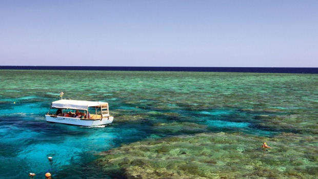 A Coral Expeditions glass bottom boat at Nathan Reef.
