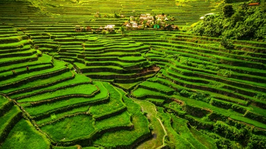 The Philippines has plenty of attractions to rival its neighbours, including World Heritage-listed rice terraces.