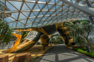 Discovery Slides at Canopy Park.