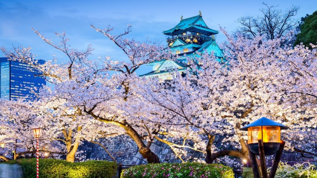 Get in early for a Japan trip in 2020.