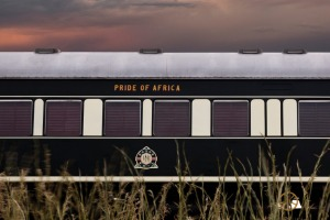 "Rohan Vos boasts that he owns ""the largest privately owned train set in the world"", which he has named Pride of Africa."