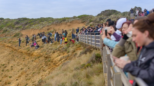 Tourists pose for photos outside the designated viewing area for the Twelve Apostles at Port Campbell.  But the ...