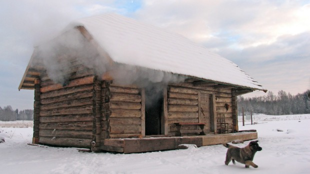 When things really get steamy in the sauna, the Finns lash one another with birch branches.