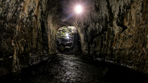 A lava tube in the highlands of Santa Cruz, Galapagos National Park.