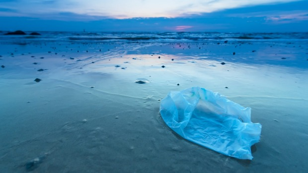 The single-use plastic bag is a key culprit in worldwide plastic pollution. There are plenty of light-weight, foldable ...