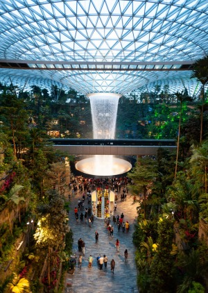 Rain Vortex and Shiseido Forest Valley: The Jewel features an indoor waterfall and forest valley.