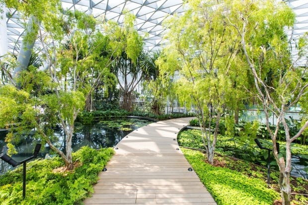 The Jewel Changi Airport, Singapore: 10-storey elliptical dome with a strikingly graceful honeycombed skin of glass and ...