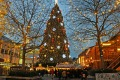 The Dortmund Christmas market and its giant tree.