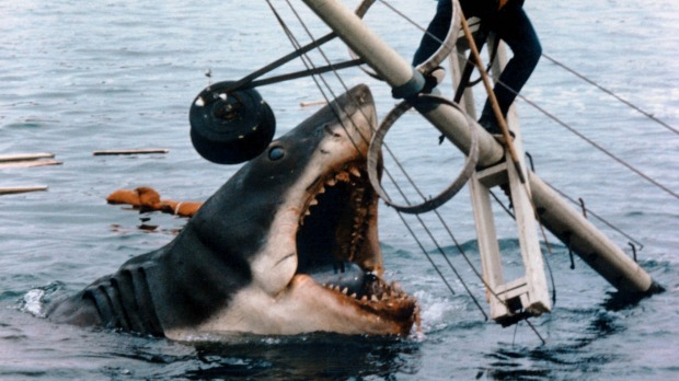 """'You're going to need a bigger boat"""": Bruce in a scene from Jaws after dining on some of the locals."""