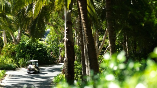 Golf buggies are the usual way to get around on Hamilton Island.