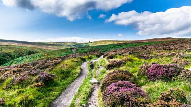 Haworth Moor.