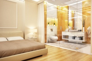 Glass walls to bathrooms are an invasion of privacy.