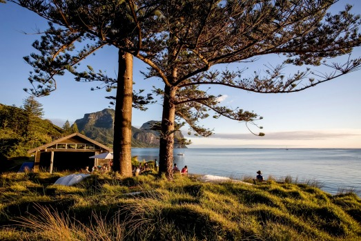 Australia's No.1 hotel for 2020 based on TripAdvisor's Traveller's Choice Awards: Pinetrees Lodge, Lord Howe Island.