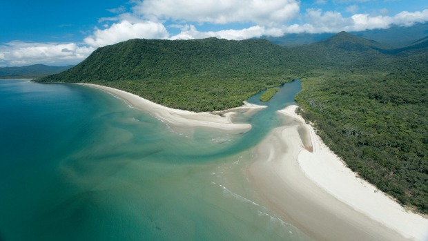 Cape Tribulation's pristine beaches are alluring but also the haunts of salt-water crocodiles.