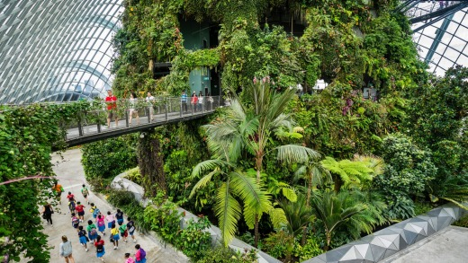 Singapore's Cloud Forest Dome is a thoroughly modern greenhouse that you explore on multiple levels.