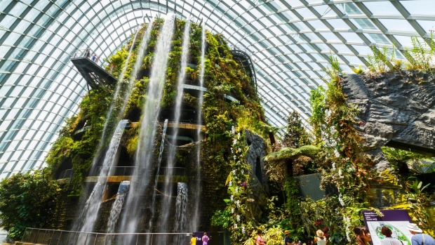 The giant waterfall in the Cloud Forest Dome.