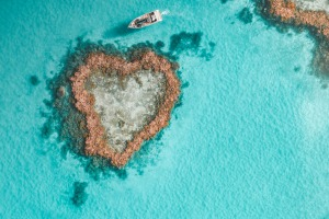 Heart Reef was not discovered until 1975 and has remained free of visitors until now.