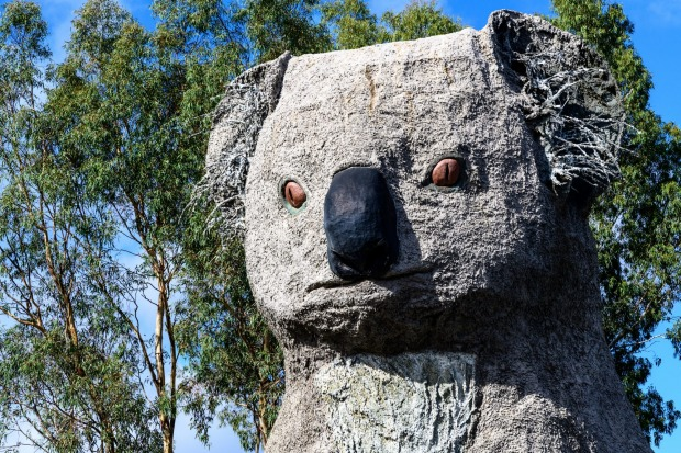 The Giant Koala, Victoria: Of course, this follows in the fine tradition of Australia's Big Things. But a lot of them ...