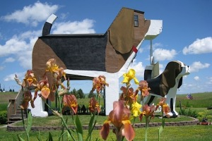 Dog Bark Park Inn, Idaho: It's almost worth going well out of the way to Cottonwood, Idaho, just to see the Dog Bark ...