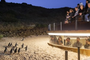 The $58 million Penguin Parade visitor centre on Victoria's Phillip Island.