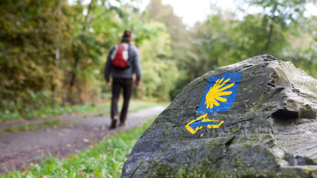 Pilgrimage of a lifetime: How and why you should walk Europe's famous Camino
