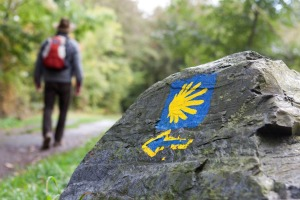 Walking the Camino de Santiago trail.