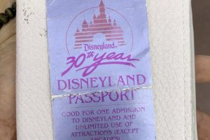 The 34-year-old Disnleyland ticket.