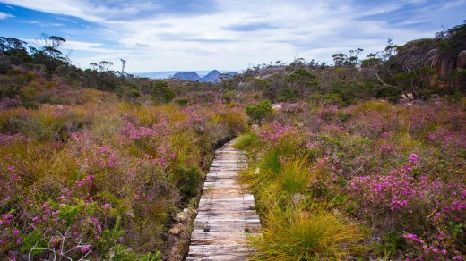 The Freycinet Experience Walk is a four-day submersion into one the most stunning coastal wilderness areas on Earth.