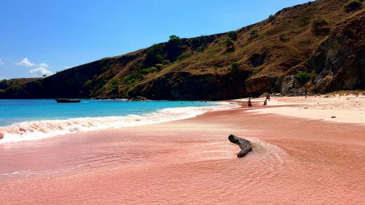 Another of Komodo's natural wonders - the pink beach.