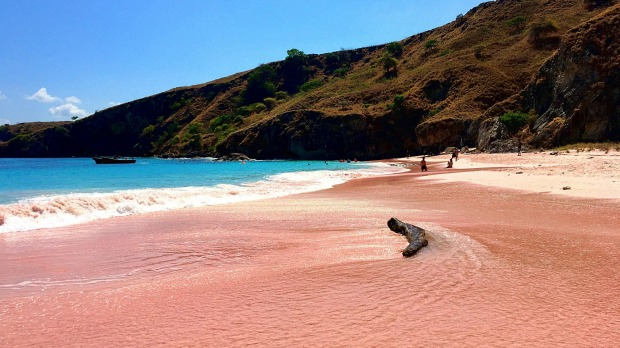 A beautiful Pink Beach and blue clear water from Komodo Island (Komodo National Park), Labuan Bajo, Flores, Indonesia ...
