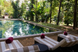 The Wallaww by Teardrop Hotels. A swim in the pool in the tropical gardens is just the cure for jet lag.