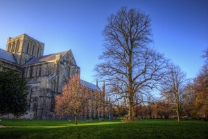Winter trees under clear blue sky with ancient Winchester Cathedral in background.